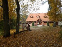 Photo by http://szkola-lesna.torun.pl